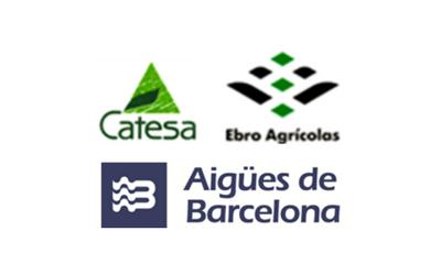 Sale of Compañía Agrícola de Tenerife, S.A. (subsidiary of Ebro Agrícolas) to Aguas de Barcelona