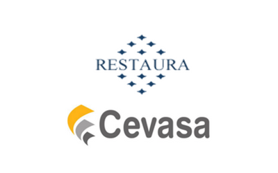 Acquisition of 20% in Cevasa